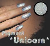 Unicorn Holographic Pigment/Powder Chrom/Spiegel Effekt - 3 Gramm