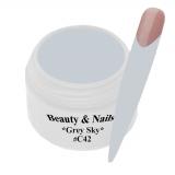 UV Farbgel *Grey Sky* - 5ml - #C42