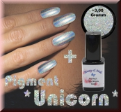 Unicorn Holographic Pigment/Powder Chrom/Spiegel Effekt 3gr. + Perfekt Top Gloss 15ml