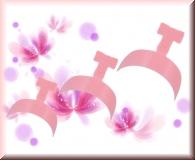100 Farb-French Spitzen mit Tipbox- Rosé
