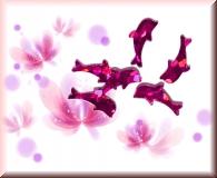 Glänzende Delfine - Pink