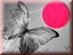Funkelnder Glitzerstaub  NEON Pink Star  #1